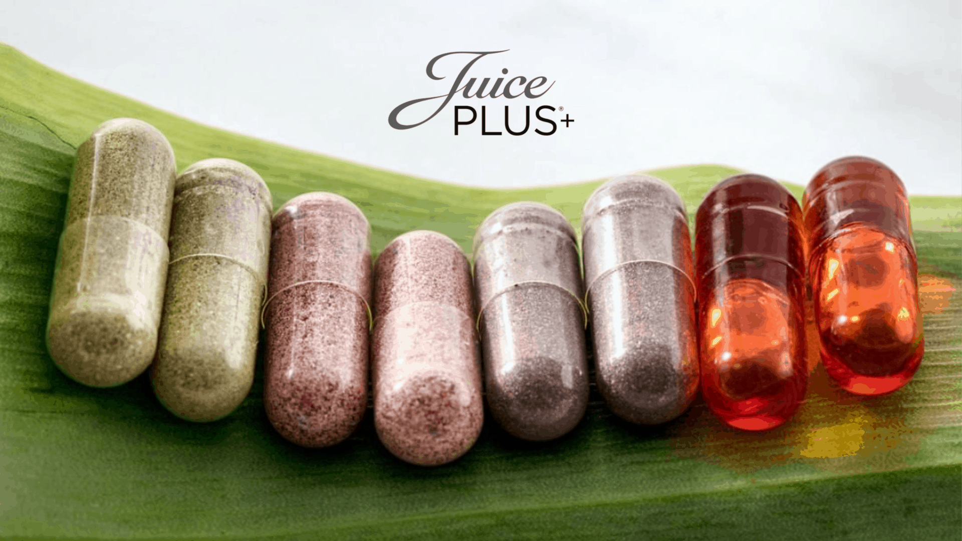 Juice Plus Blends Brochure Cover Image
